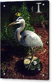 Life Size Great Blue Heron Wildlife Art Sculpture Acrylic Print by Chris Dixon