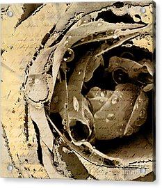 Life Vi Acrylic Print by Yanni Theodorou