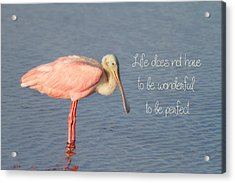 Life Wonderful And Perfect Acrylic Print