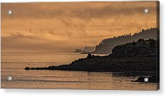Acrylic Print featuring the photograph Lifting Fog At Sunrise On Campobello Coastline by Marty Saccone