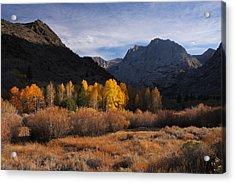 Light And Dark In An Autumnal Sierra Landscape Acrylic Print