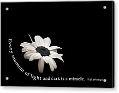 Light And Dark Inspirational Acrylic Print
