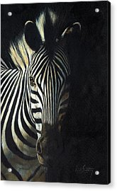 Light And Shade Acrylic Print by David Stribbling