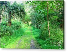 Acrylic Print featuring the photograph Light At The End Of The Tunnel by Becky Lupe
