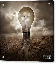 Light Bulb Growing An Idea In Nature Acrylic Print by Angela Waye