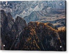 Light Of Autumn Acrylic Print by Uschi Hermann