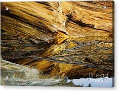 Light On Sea Cliffs Acrylic Print