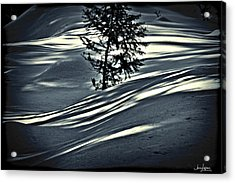 Acrylic Print featuring the photograph Light On The Snow by Janie Johnson