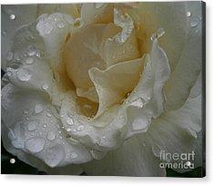 Light Rain Acrylic Print by Drew Shourd