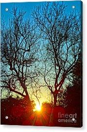 Light Sanctuary Acrylic Print by Gem S Visionary