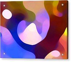 Light Through Branch Acrylic Print by Amy Vangsgard