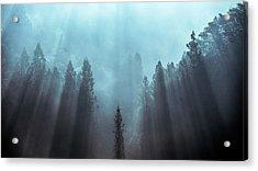 Light To Be Believed Likely Acrylic Print by Tsuneya Fujii