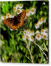 Acrylic Print featuring the digital art Light To The Touch. by Timothy Hack