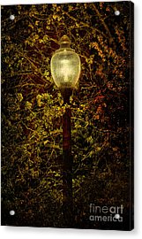 Light Unto Darkness - Greensboro North Carolina Acrylic Print by Dan Carmichael
