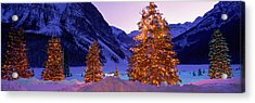 Lighted Christmas Trees, Chateau Lake Acrylic Print by Panoramic Images
