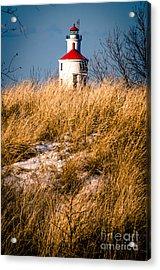 Acrylic Print featuring the photograph Lighthouse Amongst The Tall Grass by Mark David Zahn