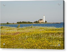 Lighthouse At Yellow Coast Acrylic Print