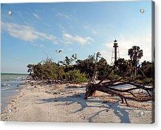 Lighthouse Beach Acrylic Print by Rosalie Scanlon