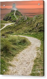 Lighthouse Trail Acrylic Print by Adrian Evans