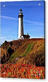 Acrylic Print featuring the photograph Lighthouse With Red Blooms by Charles Lupica