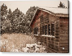 Acrylic Print featuring the photograph Snowing Softly by Shirley Heier