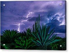 Lightning During Storm Acrylic Print by Dmitry Sergeev