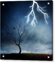 Lightning Tree Acrylic Print by Sebastien Del Grosso