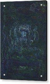 Lightpicture 374 Acrylic Print