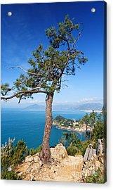 Acrylic Print featuring the photograph Liguria - Tigullio Gulf by Antonio Scarpi