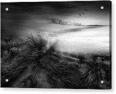 Like A Dream Acrylic Print by Fran Osuna