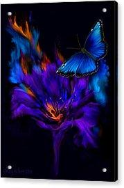 Like A Moth To A Flame Acrylic Print