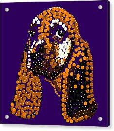 Li'l Jill Bedazzled Acrylic Print