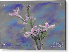 Lilac Dream Acrylic Print by Jennifer Lesher - Arellano