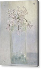 Acrylic Print featuring the photograph Lilac Flower by Annie Snel