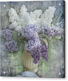 Lilac Acrylic Print by Jeff Burgess