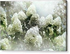 Lilac Cloud Acrylic Print