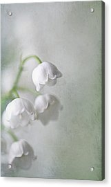 Acrylic Print featuring the photograph Lilies Of The Valley by Annie Snel