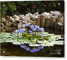 Lilies On The Pond Acrylic Print by Darla Wood