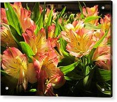Lilies Acrylic Print