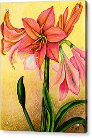 Lilies Acrylic Print by Zina Stromberg