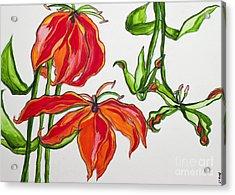 Lilies In Orange Acrylic Print