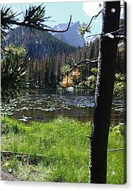Lilly Lake Acrylic Print by Stephen Schaps