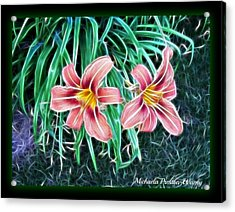 Lilly Acrylic Print by Michaela Preston