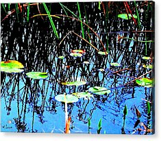 Lilly Pads - Abstract Acrylic Print