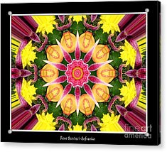 Lily And Chrysanthemums Flower Kaleidoscope Acrylic Print by Rose Santuci-Sofranko