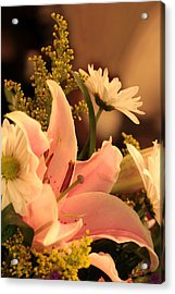 Lily In Pink Acrylic Print