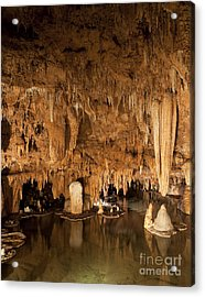Lily Pad Formations Inside A Missouri Cave Acrylic Print