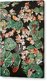 Lily Pads And Leaves Acrylic Print by Anthony Mezza