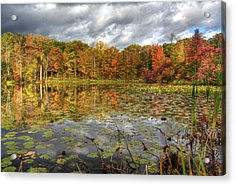 Lily Pads On Foster Pond Acrylic Print