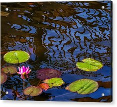 Lily Pond Abstract A Study In Patterns Acrylic Print